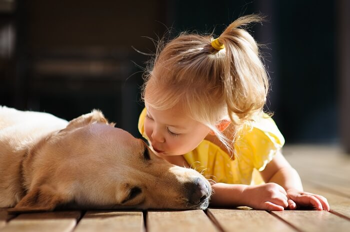 Child kissing dog
