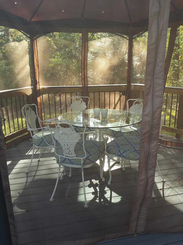 Screened porch with tea area