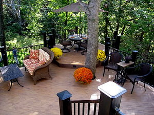 Custom backyard deck with tree trunk in the middle