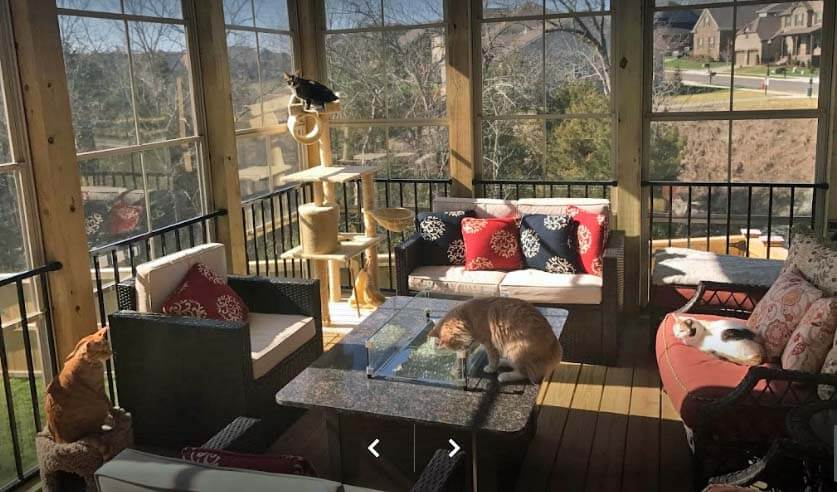 Custom breeze porch with cats