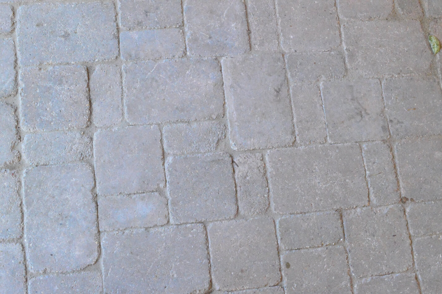 Close up of Paver
