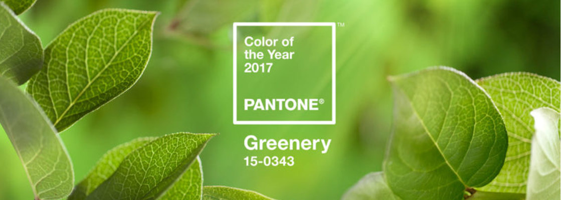 2017 Pantone Color of the Year Greenery 15-0343