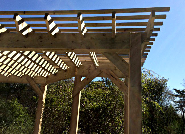 Wood deck and pergola